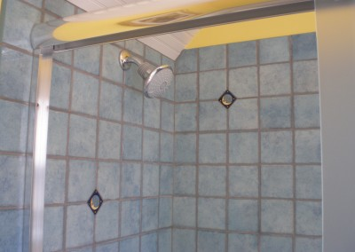 Master Bath on Evelyn, Albany